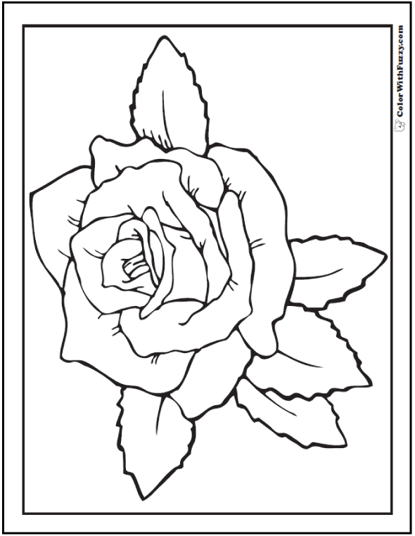 Rose coloring sheet: Leaves and bloom.