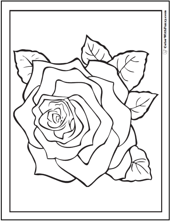 Spring Rose Flower Coloring Pages