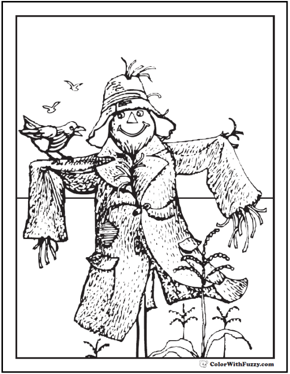Halloween coloring pages: Scarecrow coloring picture and corn crop.