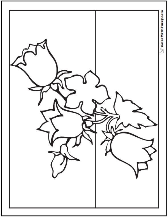 Spring Flowers Coloring - Bluebells In Outline
