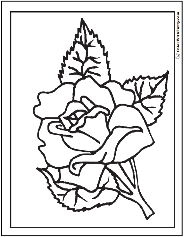 Lapel Spring Rose To Color