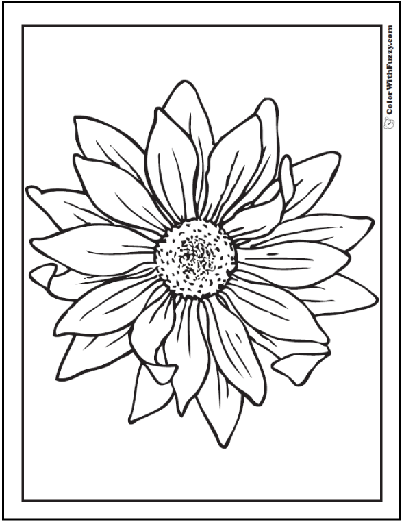 Sunflower Coloring Page 14 Pdf Printables