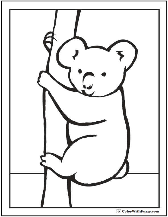 Peek A Boo Koala Coloring Sheet