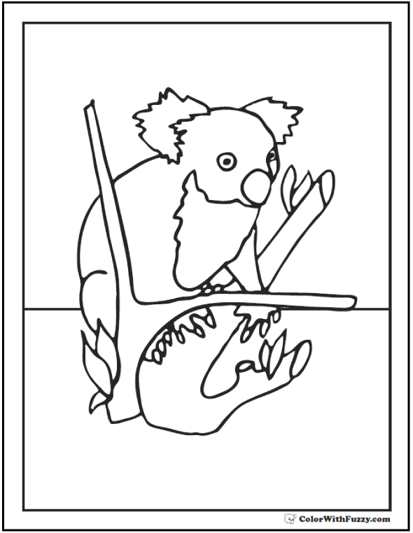 Koala Coloring Pages For Kids Hop A Ride With