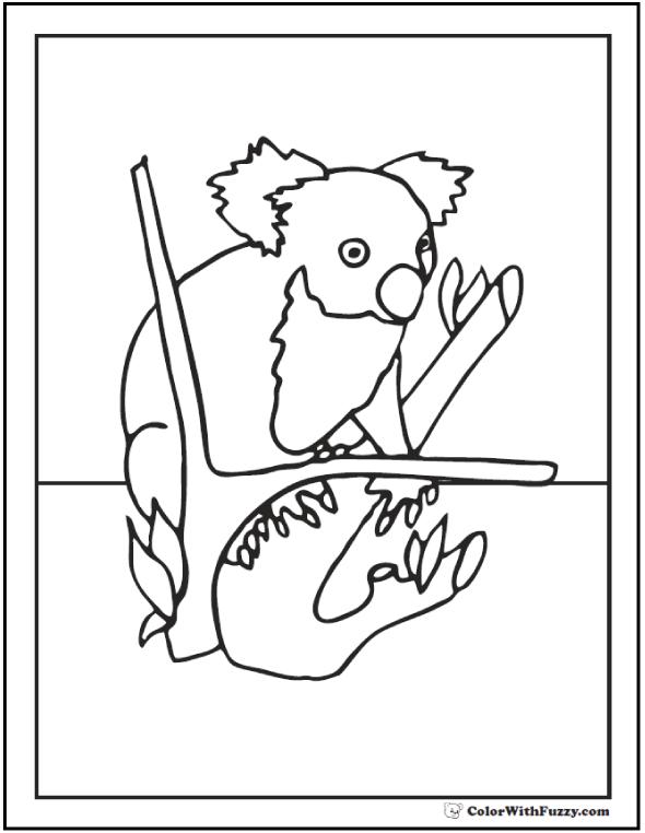 Sweet Koala Coloring