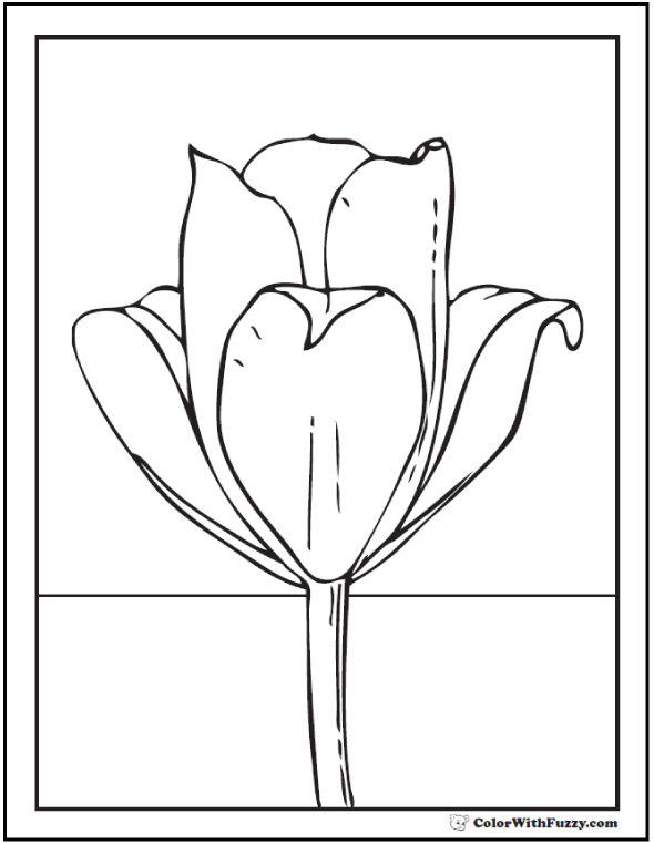 Single Tulip Coloring Picture