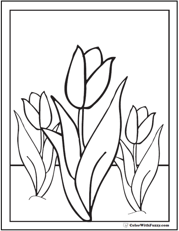 Tulip Spring Flowers Coloring Sheet