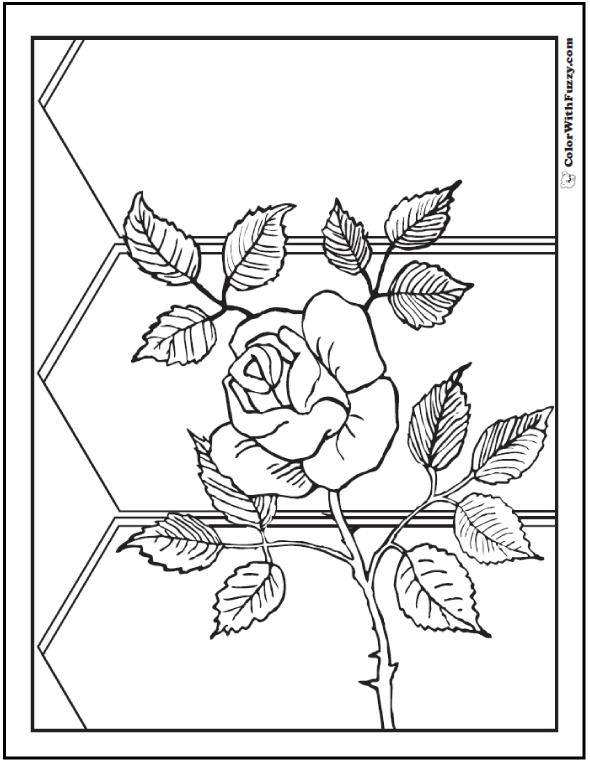Fence and Wild Rose Coloring Sheet