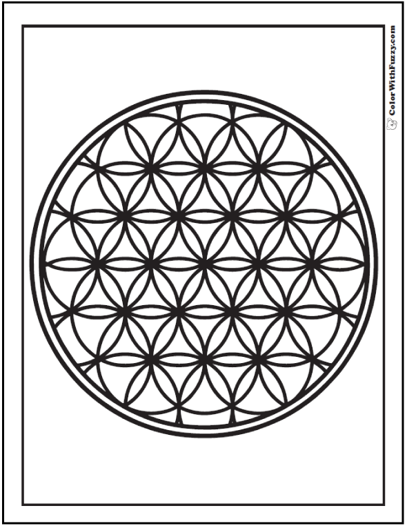 Detailed Geometric Coloring Sheet: Circles and flowers with rim.