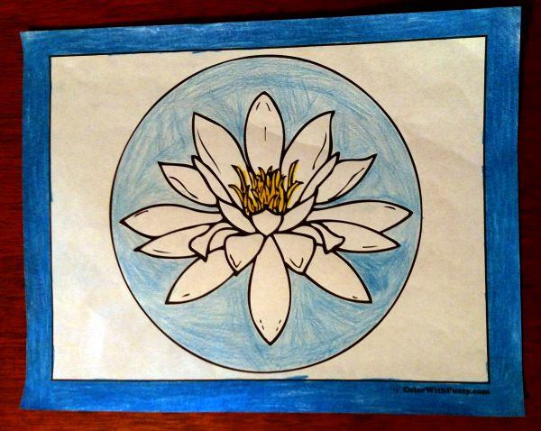 Easter, Calla, Stargazer, Stella Doro lily coloring pages.