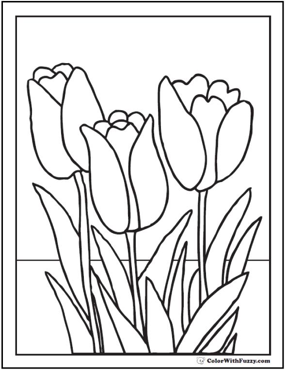 Printable Tulip Coloring Page - Three Tulips