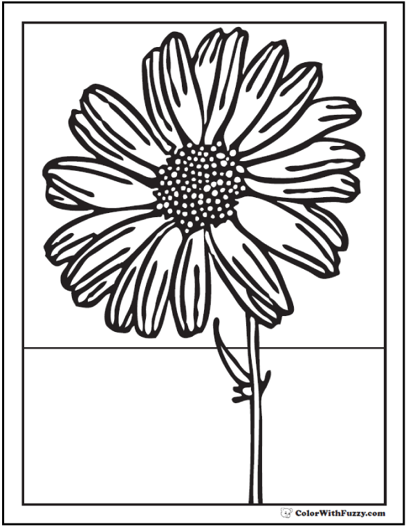 Sunflower Coloring Picture - Front